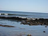 tide-pools.jpg